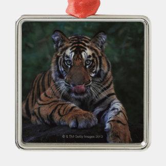 Tiger Cub Reclines on Rock Metal Ornament