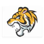 Tiger Cub Shirt   Cute Custom Tiger Cub Shirt Post Cards