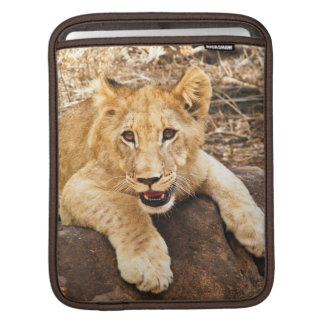 Tiger Cub Takes Breather On A Rock iPad Sleeve