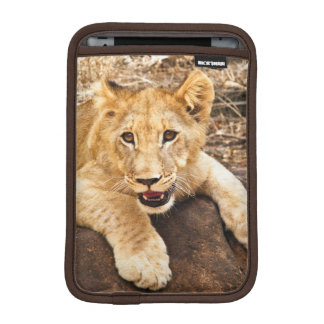 Tiger Cub Takes Breather On A Rock Sleeve For iPad Mini