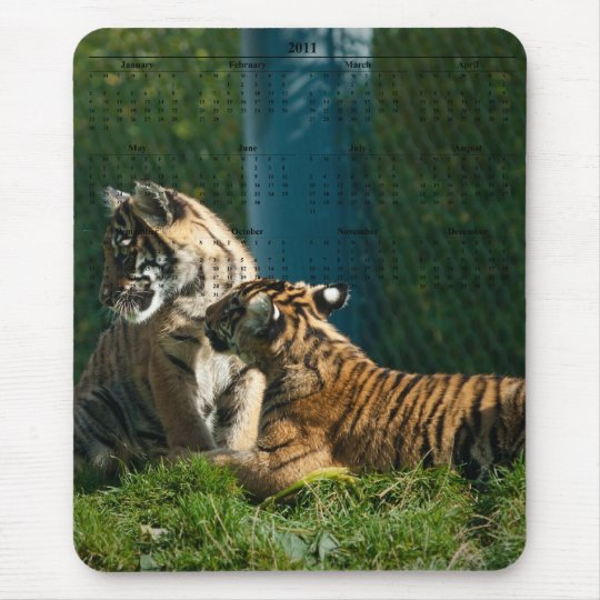 Tiger Cubs Mouse Pad