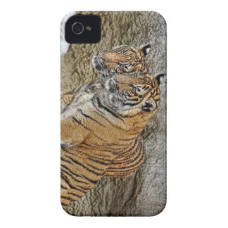 Tiger Cubs Twins Case-Mate iPhone 4 Case