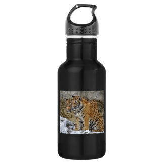 Tiger Cubs Twins Water Bottle
