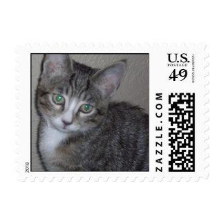 """""""Tiger"""" Custom Postage Stamps"""