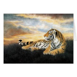 Tiger Dawn Greeting Card