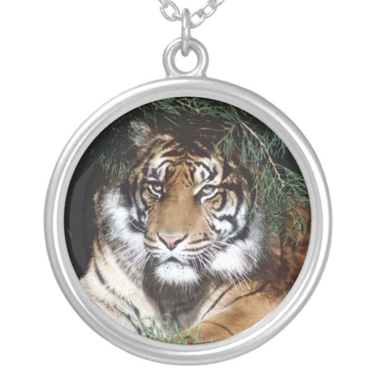 Tiger day  Necklace