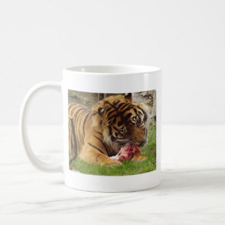 Tiger Eating His Meat Real Photo Classic White Coffee Mug