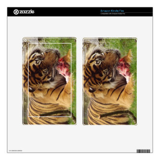 Tiger Eating His Meat Real Photo Kindle Fire Decal