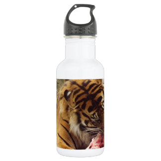 Tiger Eating His Meat Real Photo Stainless Steel Water Bottle