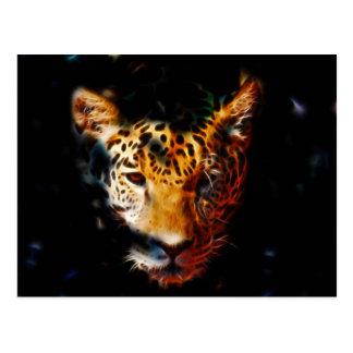 Tiger emerging postcard