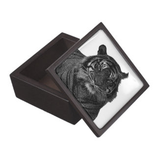 Tiger Endangered Species Wild Cats Black and White Jewelry Box