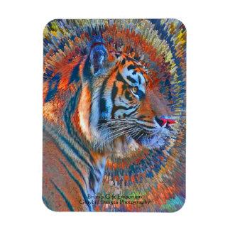 Tiger Explosion Magnet
