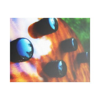 Tiger eye bass pickup knobs close up stretched canvas prints