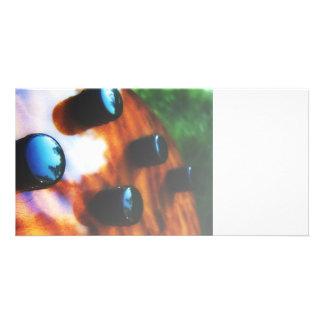 Tiger eye bass pickup knobs close up photo card