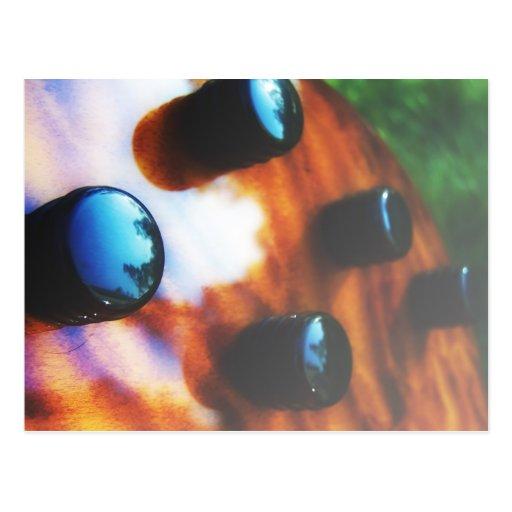 Tiger eye bass pickup knobs close up postcard