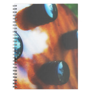 Tiger eye bass pickup knobs close up spiral notebook