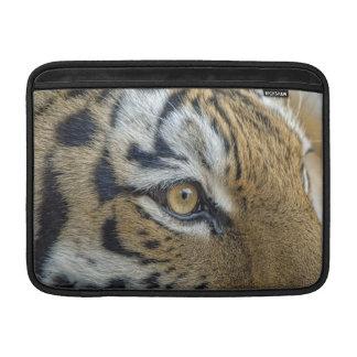 Tiger Eye Close-Up MacBook Sleeves