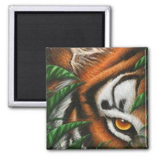 Tiger Eye Magnet