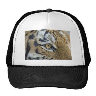 Tiger Eye of the Tiger Ball Cap Trucker Hats