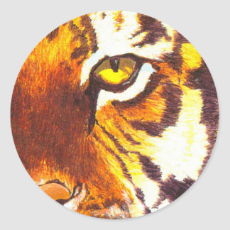 Tiger Eye Sticker