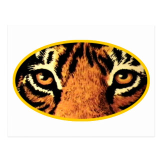 Tiger Eyes Gold The MUSEUM Zazzle Gifts Postcard