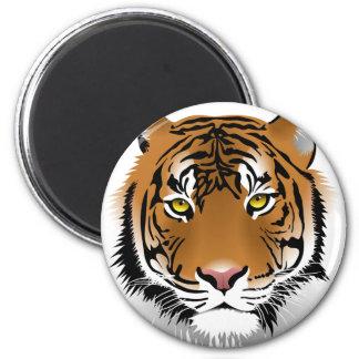 Tiger Eyes Magnet