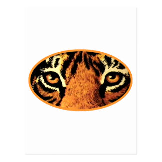 Tiger Eyes Orange The MUSEUM Zazzle Gifts Postcard