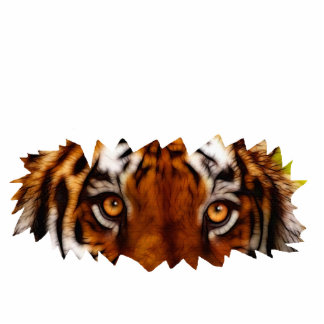 TIGER EYES sculpted Big Cat Wildlife Gift Item Photo Cut Out