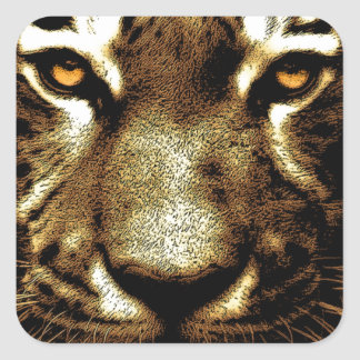 Tiger Eyes Square Stickers