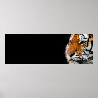 Tiger Eyes Wild Animal Art Courage Leadership Poster