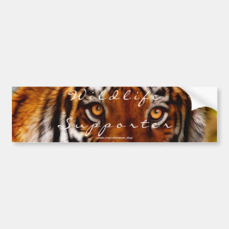TIGER EYES Wildlife Supporter BUMPER STICKER