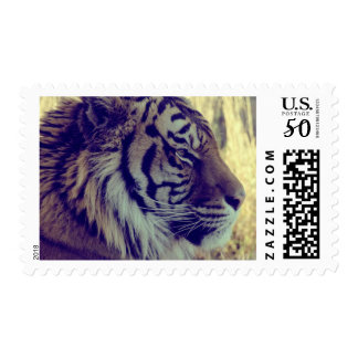 Tiger Face Aside Special Light Effect Vintage Postage