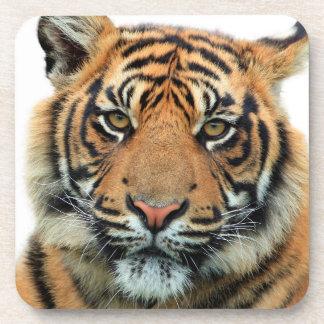 Tiger Face Beverage Coaster