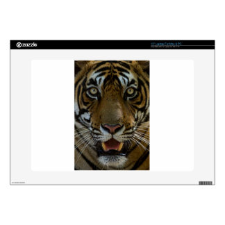 """Tiger Face Close Up 15"""" Laptop Skin"""