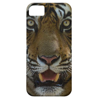 Tiger Face Close Up iPhone SE/5/5s Case