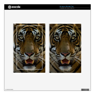 Tiger Face Close Up Skins For Kindle Fire