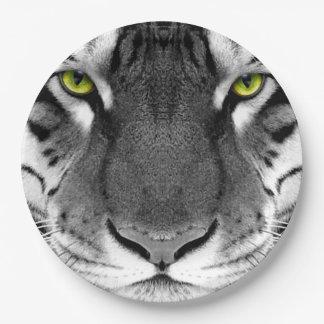 Tiger face - white tiger - eyes tiger - tiger paper plate