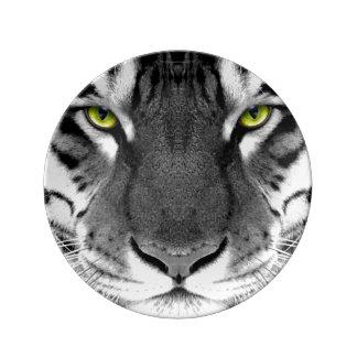 Tiger face - white tiger - eyes tiger - tiger porcelain plate
