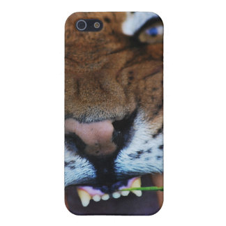 Tiger Fangs Close UP Case For iPhone SE/5/5s