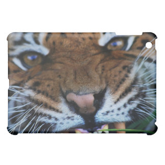 Tiger Fangs Close UP Cover For The iPad Mini
