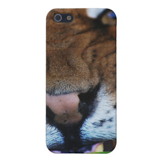 Tiger Fangs Close UP iPhone SE/5/5s Cover