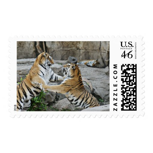 TIGER FIGHT - ACTION PHOTOGRAPH POSTAGE STAMPS