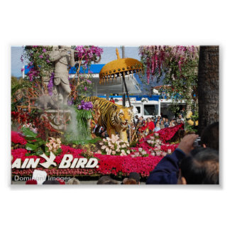 Tiger Float Rose Parade Pasadena, Dominant Images Poster