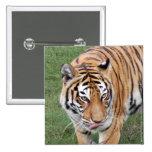 Tiger Friends-011 Pinback Button