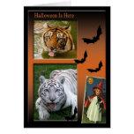 Tiger Friends-4 Card