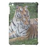 tiger-friends-b-1