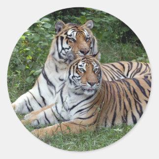tiger-friends-b-1 classic round sticker