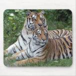 tiger-friends-b-1 mousepads