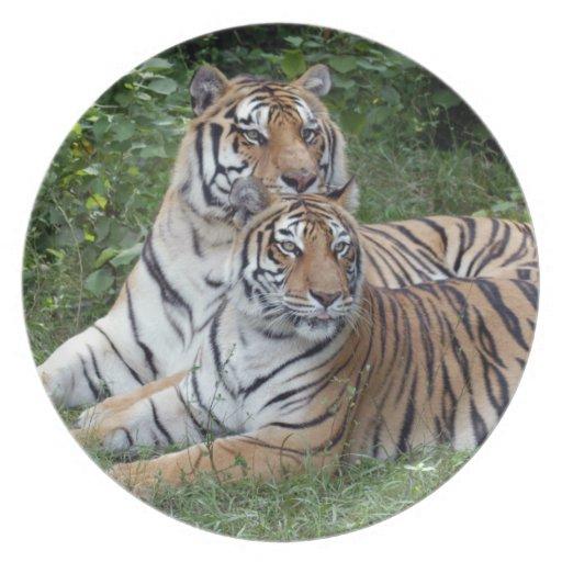 tiger-friends-b-1 platos