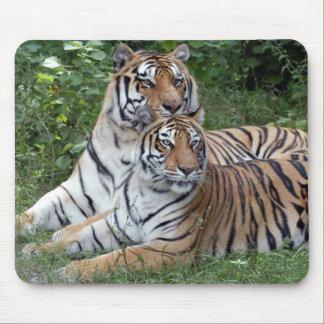tiger-friends-b-1 tapetes de raton